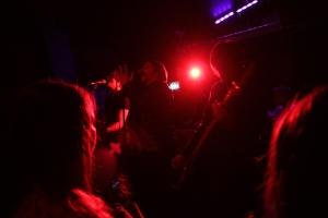 Ivyrise Live 1